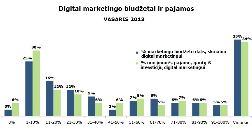 Digital marketingo dalis bendram marketingo biudžete 2013 m.